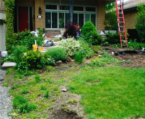 Construction: Front Yard Renovation