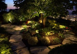 Low Voltage Night Lighting, Led and Halogen